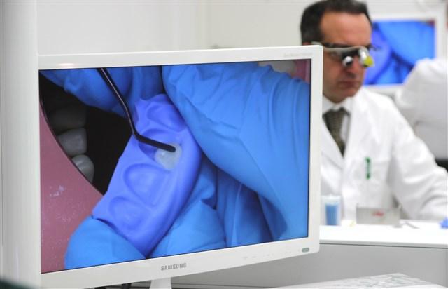 Während des Seminars wird jeder einzelne Behandlungsschritt auf Bildschirmen liv