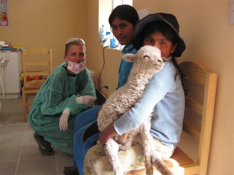 Un visiteur inattendu dans la salle d'attente : l'équipe de « Dentists and frien